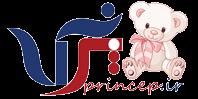 www.princep.ir